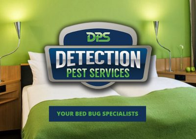 Detection Pest Services